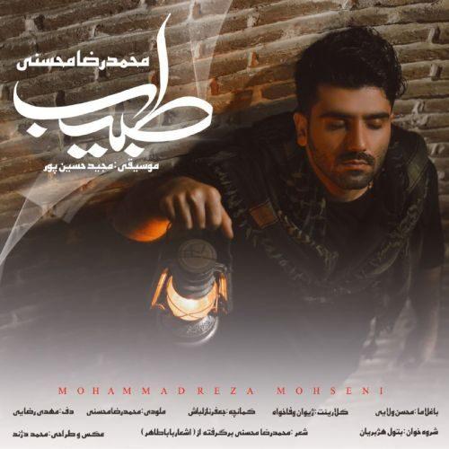 دانلود موزیک جدید جدید محمد رضا محسنی طبیب