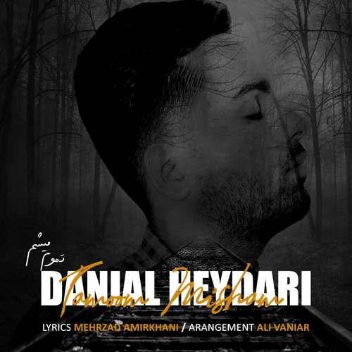 دانلود موزیک جدید دانیال حیدری تموم میشم