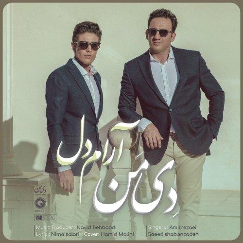 دانلود موزیک جدید گروه دی من (امیر رضایی و سعید شعبان زاده) آدام دل