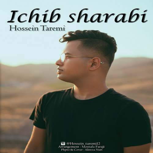 دانلود موزیک جدید حسین طارمی ایچیب شرابی